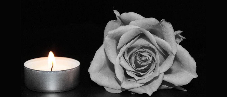 In Mitgefühl und Gedenken an unser Mitglied Elfi G. Pliester